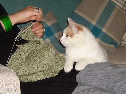 Knittinghyp