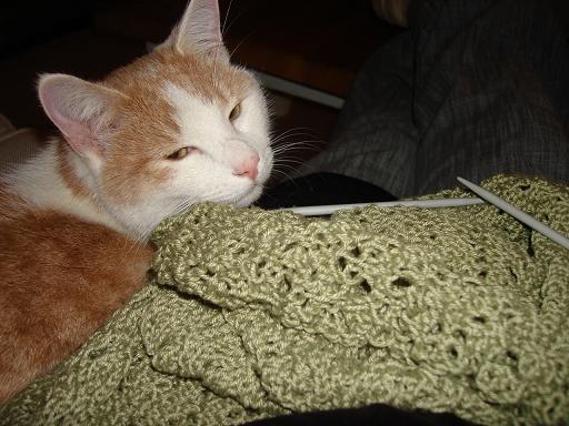 Knittinghyp1