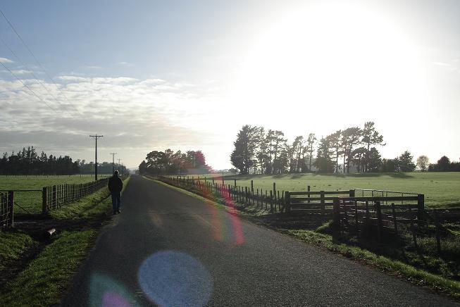 Morningwalk2