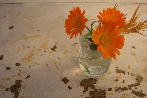 Colourweek_orange